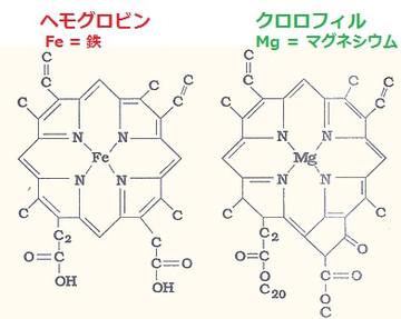 Hemoglobin_chlorophyll
